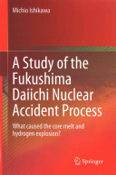 A Study of the Fukushima Daiichi Nuclear Accident Process