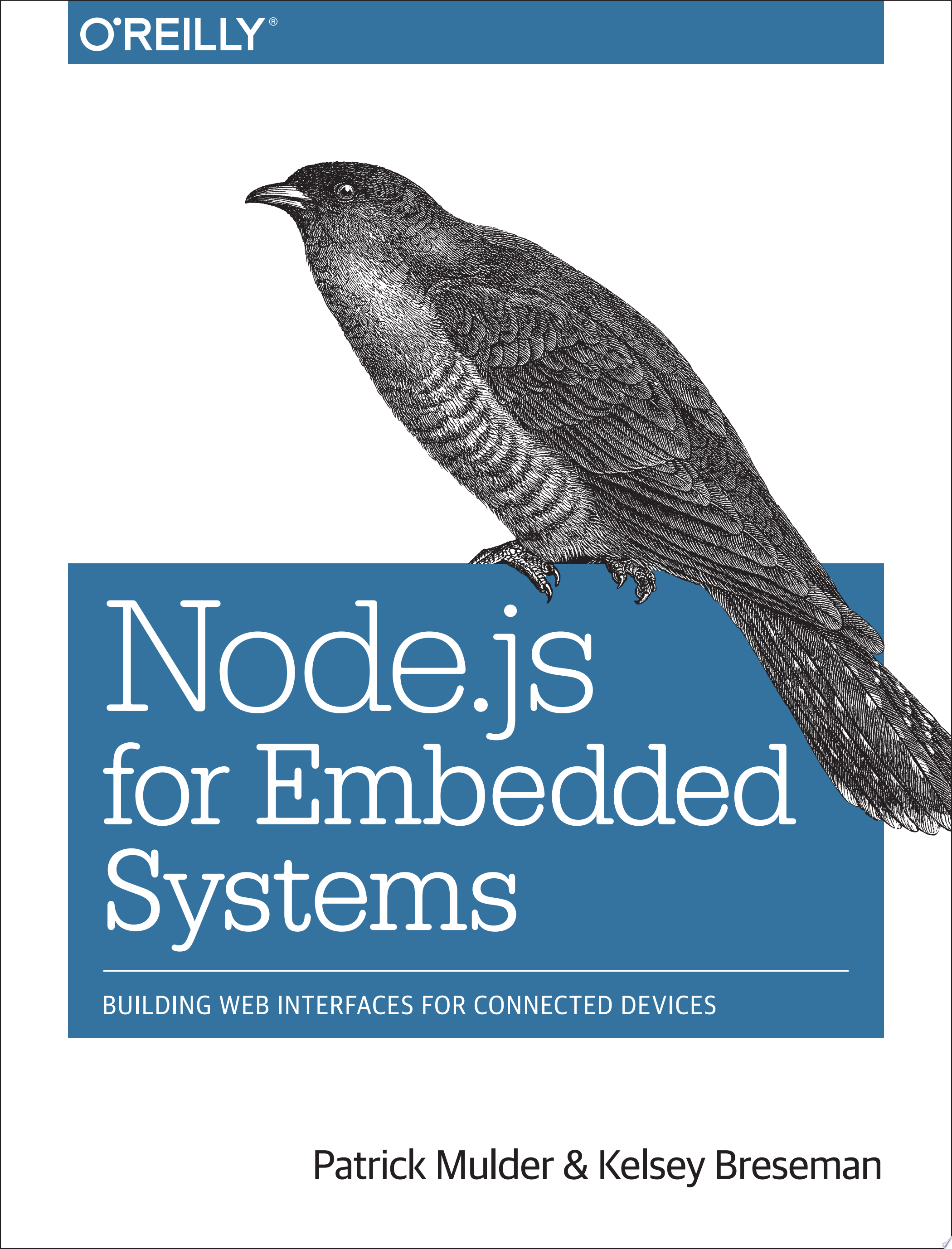 Node js for Embedded Systems