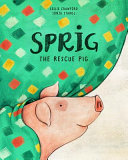 Sprig the Rescue Pig