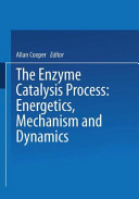 The Enzyme Catalysis Process