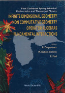 Pdf Infinite Dimensional Geometry, Noncommutative Geometry, Operator Algebras And Fundamental Interactions - Proceedings Of The First Caribbean Spring School Of Mathematics And Theoretical Physics Telecharger
