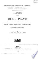 Report on the Fossil Plants of the Lower Carboniferous and Millstone Grit Formations of Canada