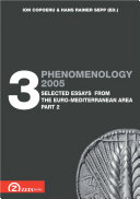 Phenomenology 2005. Volume 3: Selected Essays from Euro-Mediterranean Area, part 2