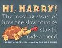 Hi Harry