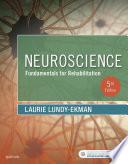 Neuroscience   E Book Book