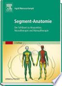 Segment-Anatomie  : Der Schlüssel zu Akupunktur, Neuraltherapie und Manualtherapie