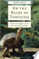 On the Backs of Tortoises