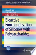 Bioactive Functionalisation of Silicones with Polysaccharides