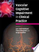 Vascular Cognitive Impairment in Clinical Practice