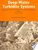 Deep Water Turbidite Systems