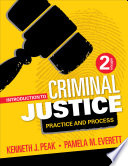 Introduction to Criminal Justice