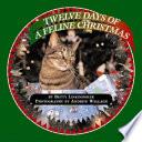 Twelve Days of a Feline Christmas