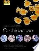 Anatomy of the Monocotyledons Volume X  Orchidaceae