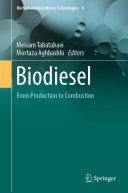 Biodiesel Pdf/ePub eBook