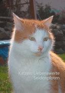 Katzen: Liebenswerte Seidenpfoten