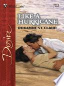 Like a Hurricane Book