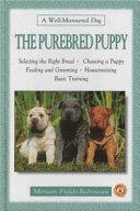 Purebred Puppy