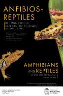 Anfibios y reptiles del municipio de San Jos   del Guaviare  Guaviare  Colombia