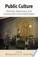 Public Culture Book