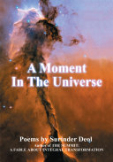 A Moment in the Universe