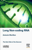 Long Non Coding RNA   the Dark Side of the Genome