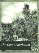 The Great Southwest