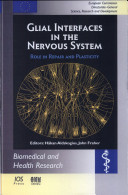 Pdf Glial Interfaces in the Nervous System