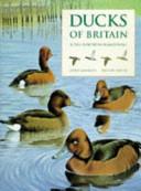 Ducks of Britain