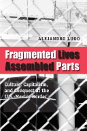 Pdf Fragmented Lives, Assembled Parts
