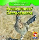 Roadrunners   Correcaminos