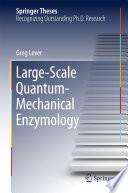 Large Scale Quantum Mechanical Enzymology