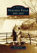 Niagara Falls ebook