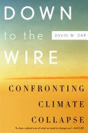 Down to the Wire Pdf/ePub eBook
