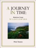 A Journey in Time