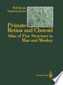 Primate Retina And Choroid Book PDF