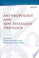 Anthropology And New Testament Theology Book