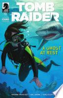 Tomb Raider  11 Book