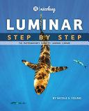 Luminar - Step by Step