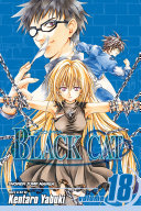 Black Cat, Vol. 18