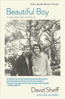 link to Beautiful boy : a father's journey through his son's addiction in the TCC library catalog