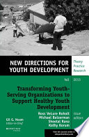 Transforming Youth Serving Organizations to Support Healthy Youth Development Book