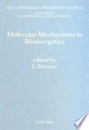 Molecular Mechanisms in Bioenergetics