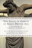 The Image of God in an Image Driven Age Pdf/ePub eBook