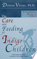 The Care and Feeding of Indigo Children Book