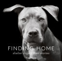 Pdf Finding Home