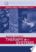 Image Guided Therapy Systems