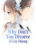 Why Don t You Divorce