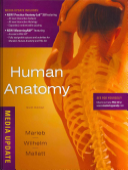 Human Anatomy   Mastering Aamp p   Brief Atlas of the Human Body   Practice Anatomy Lab 3 0