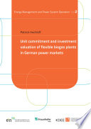 Unit commitment and investment valuation of flexible biogas plants in German power markets