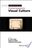 A Concise Companion To Visual Culture